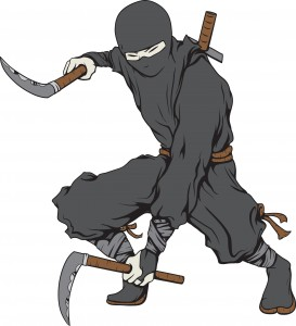 A suspicious Ninja on the trail of malware